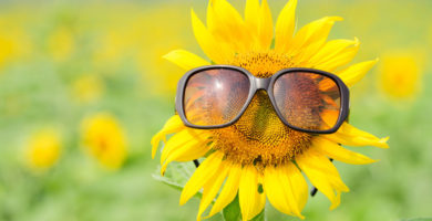 Causas de la visión borrosa en primavera